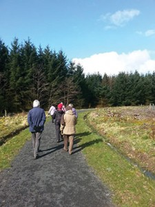 Group from the Fauldhouse Footers  (from behind) walking on footpath towards forest